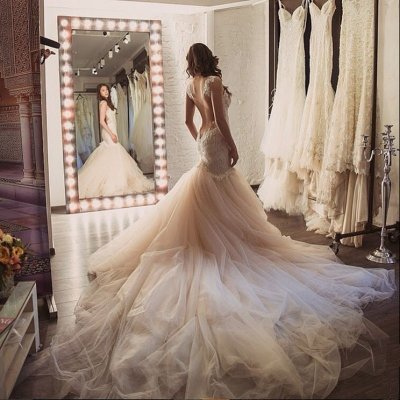 Sheath Wedding Dress with Watteau Train Backless