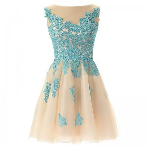 Hot-selling Bateau Sleeveless Short Champagne Homecoming Dresses with Blue Appliques