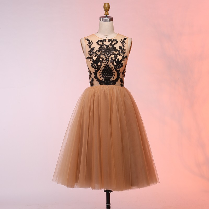 429f1a932f A-Line Round Neck Short Champagne Homecoming Dress with Appliques