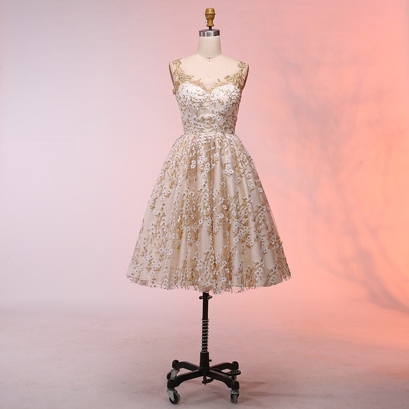 273220a890 A-Line Straps Above-Knee Light Champagne Lace Homecoming Dress