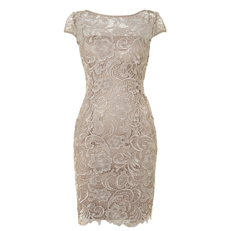 Simple Grey Knee Length Lace Mother of the Bride Dress